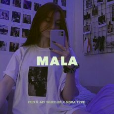 mala-8211-feid-x-jay-wheeler-type-beat-instrumental-reggaetondancehall-type-beat-2021.jpg