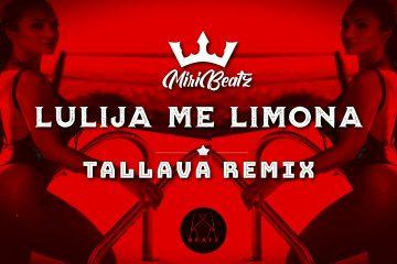 LULIJAMELIMONA | Albanian Tallava Moombahton Mix Beat | Albanian Tallava Type Beat 2021